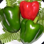 KAALA SWEET BELL PEPPER