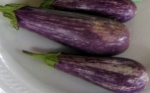 EGGPLANT, LITTLE FINGER