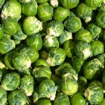 BRUSSELS SPROUTS, LONG ISLAND IMPROVED